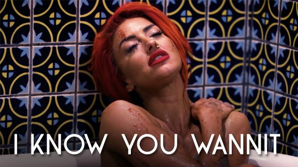 Neon Hitch I Know You Wannit