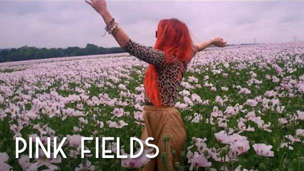 Neon Hitch Pink Fields